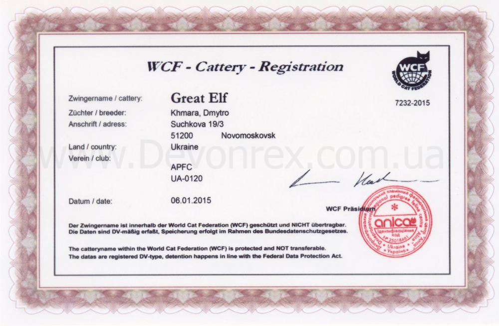 Great Elf cattery WCF registration certificate
